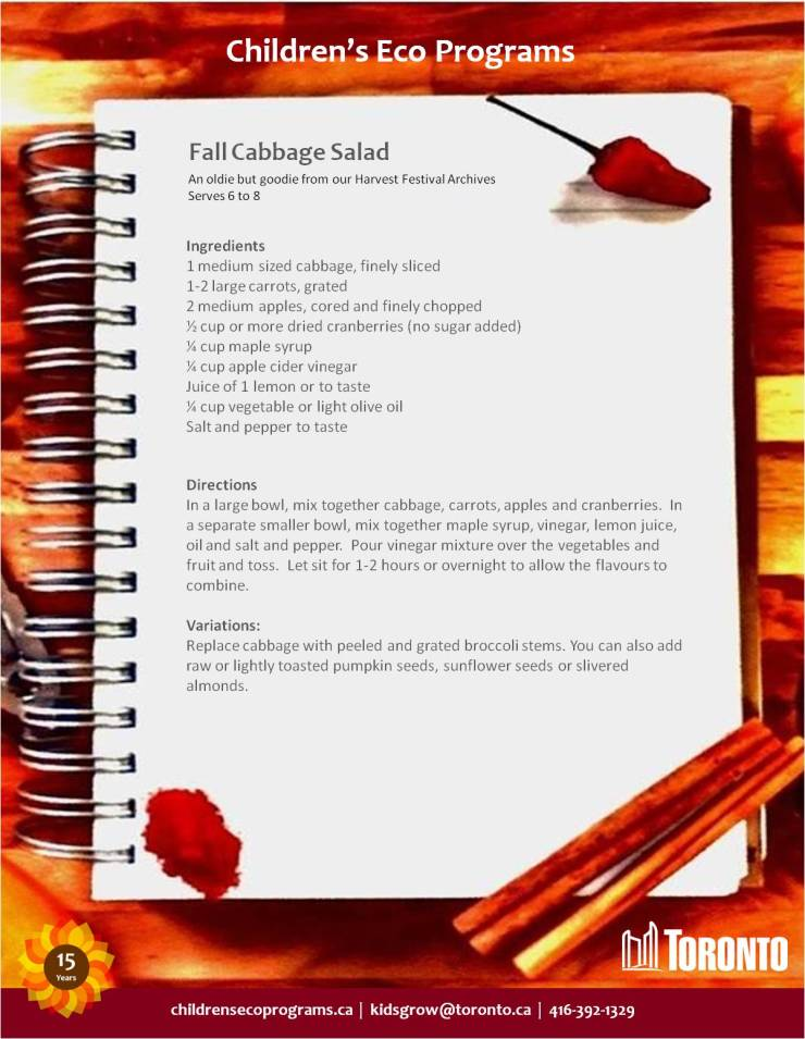 Fall Cabbage Salad