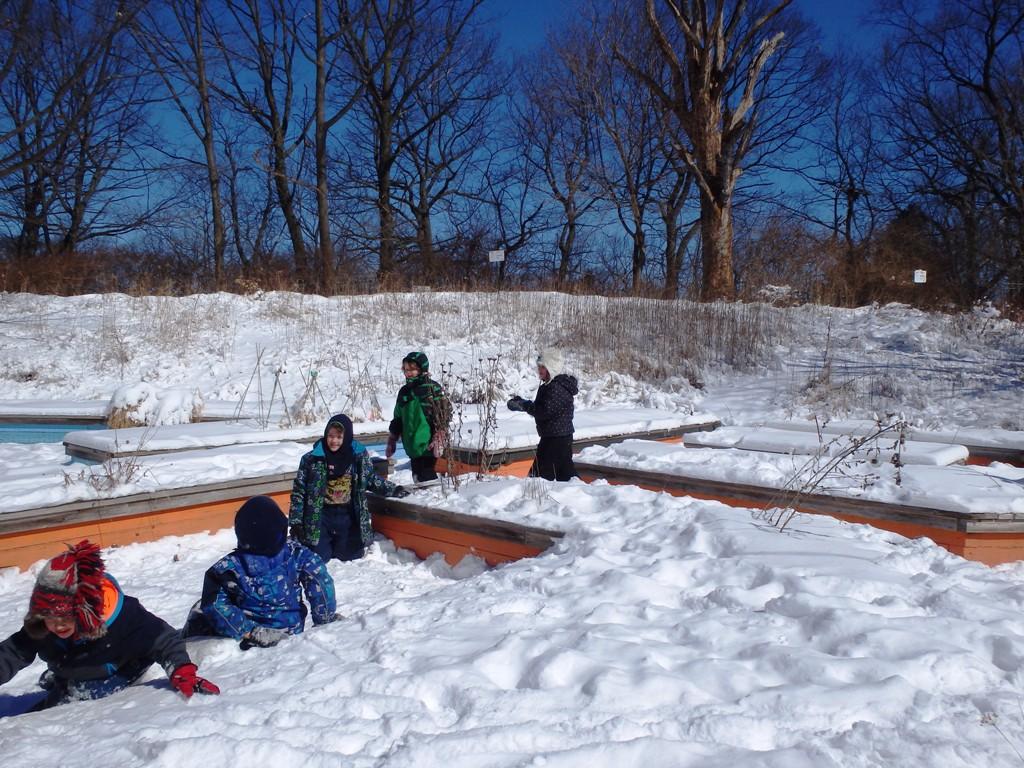 winter garden u2013 children u0027s eco programs