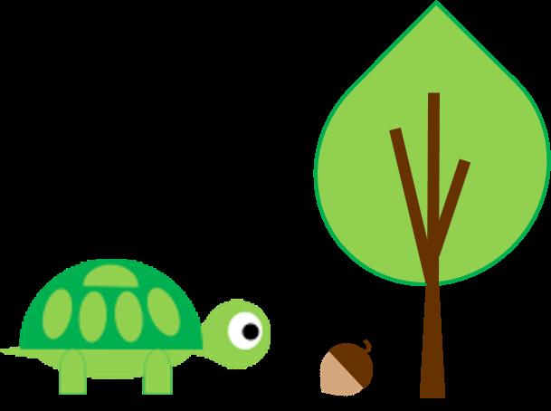 Turtle and Acorn