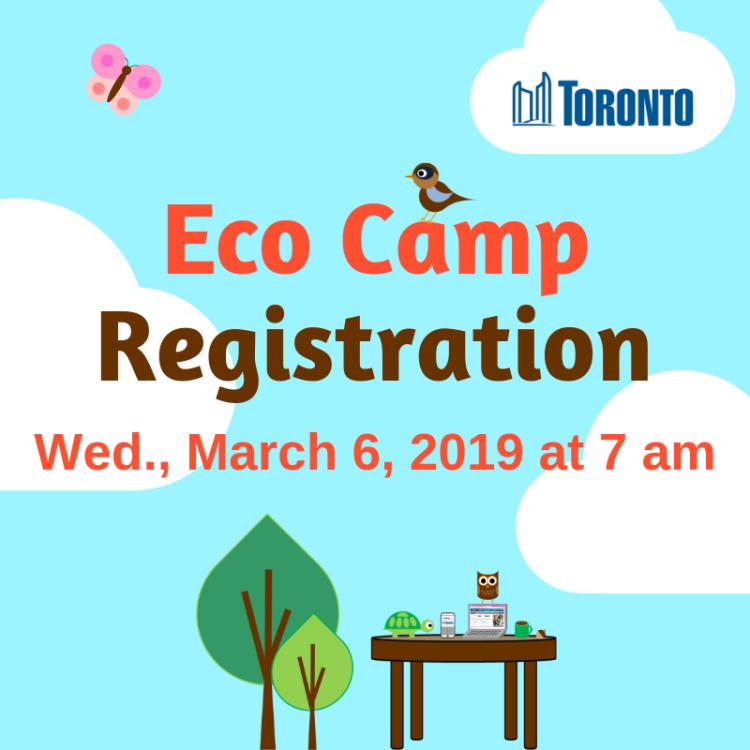 Copy of Eco Camp